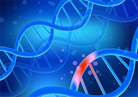 Diagnostic Challenges And Clinical Management Of Dna Repair Disorders
