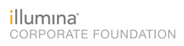 illumina corp foundation grey 2020